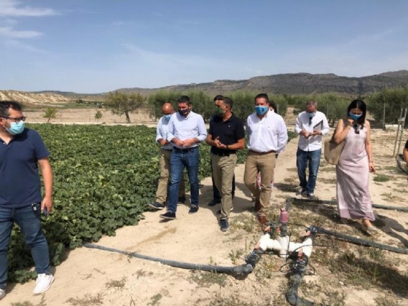 <span style='color:#780948'>ARCHIVED</span> - Experimental farm in Mula reduces the use of fertilizers in agriculture through micro-organisms