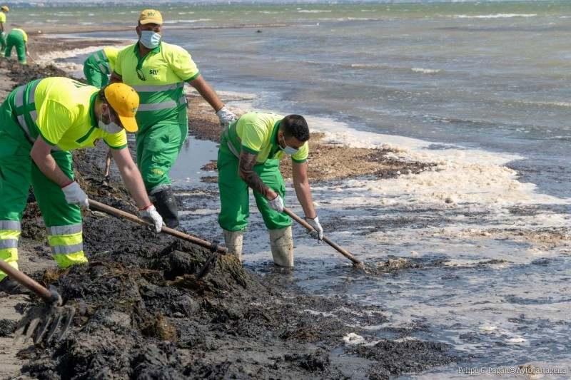 <span style='color:#780948'>ARCHIVED</span> -  Cartagena council will commission a report to remove mud and silt from Los Urrutias beaches