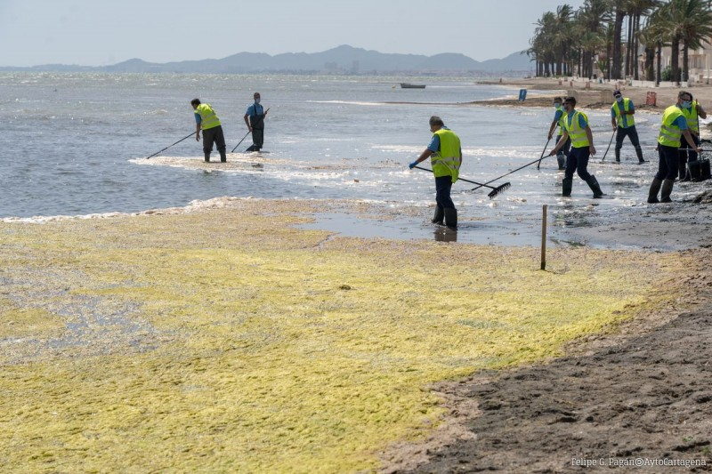 <span style='color:#780948'>ARCHIVED</span> - UN to investigate the deterioration of the Mar Menor this June