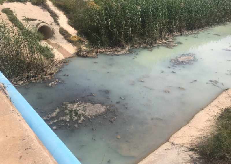 <span style='color:#780948'>ARCHIVED</span> - Murcia government faces lawsuit over failure to punish companies responsible for polluting the Mar Menor