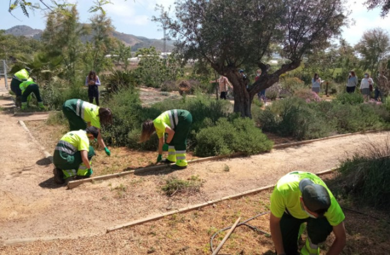 <span style='color:#780948'>ARCHIVED</span> - Work under way to rehabilitate the educational botanic garden of Mazarrón