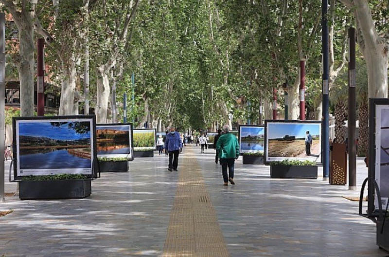 Open-air Calasparra rice fields photo exhibition in the centre of Murcia: Entre arrozales