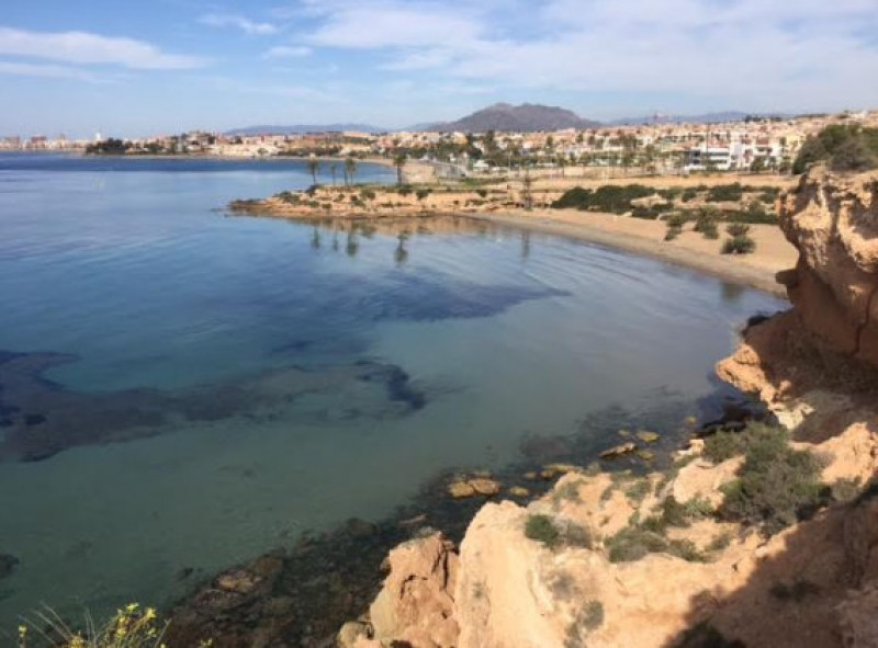 <span style='color:#780948'>ARCHIVED</span> - Almost unbroken sunshine in Murcia this week as temperatures head back up to 30!