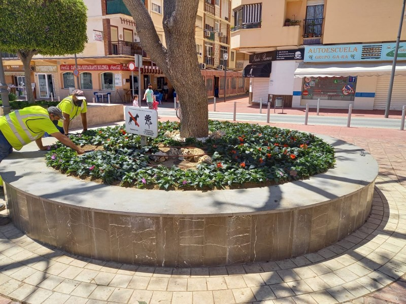 <span style='color:#780948'>ARCHIVED</span> - Rincon de la Victoria embellishes public spaces with 15,000 flowering plants
