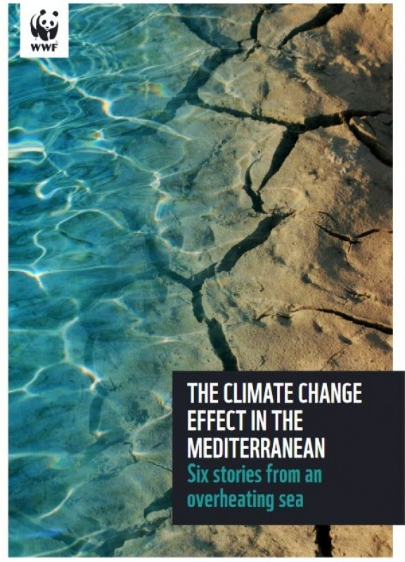 <span style='color:#780948'>ARCHIVED</span> - Mediterranean under threat due to overheating says WWF