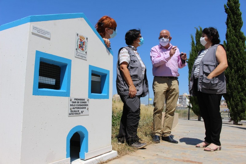 New cat houses for ferals installed in Islas Menores and the Archaeological Park of Molinete