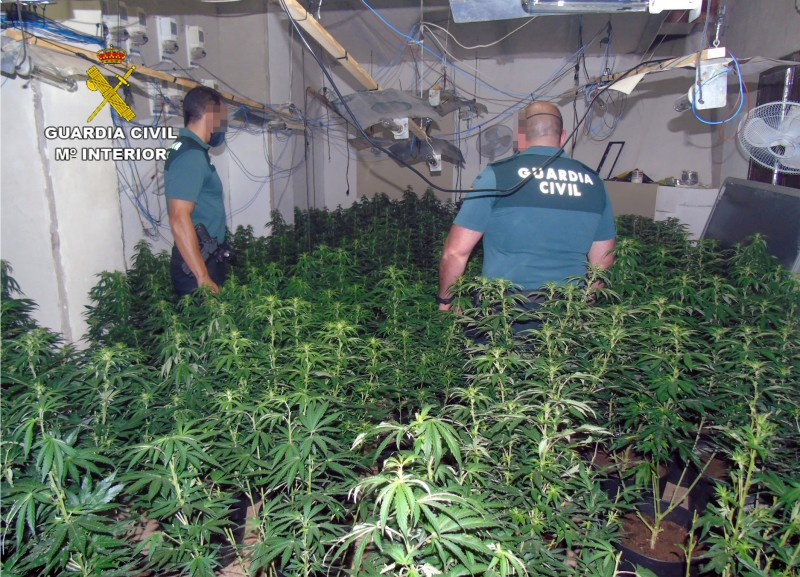 <span style='color:#780948'>ARCHIVED</span> - Three arrested in Bullas marijuana raid