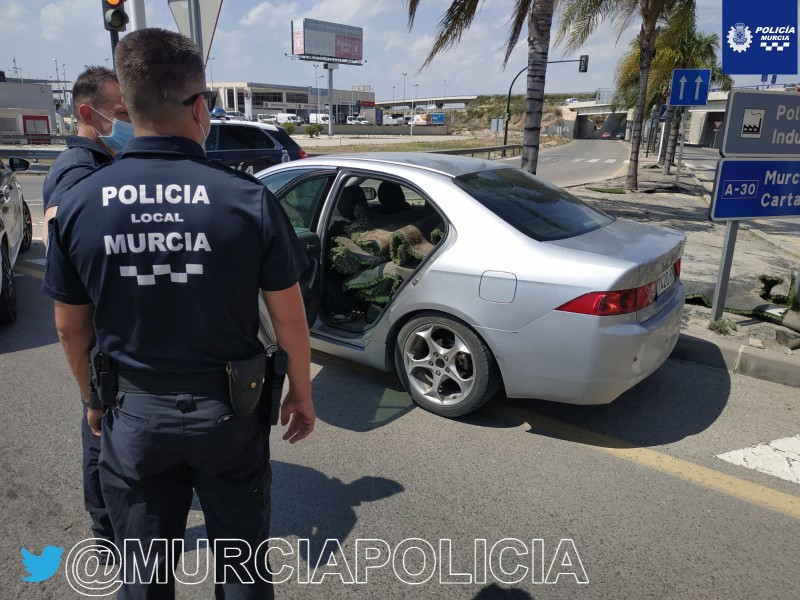 <span style='color:#780948'>ARCHIVED</span> - Murcia police catch thief stealing artificial turf from the central reservation