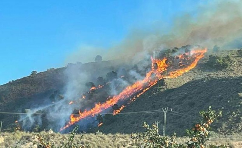 <span style='color:#780948'>ARCHIVED</span> - Forest fires scorch twice as much forest land in Murcia as in 2020