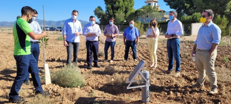 <span style='color:#780948'>ARCHIVED</span> - Pistachio farmers in Murcia employ new techniques to fight climate change