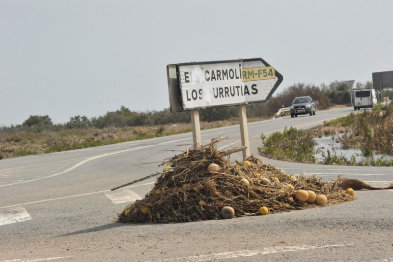 <span style='color:#780948'>ARCHIVED</span> - Regional Murcia government bans nitrate fertilizers immediately around the Mar Menor