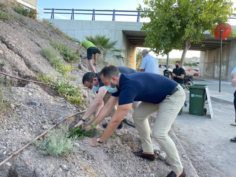 <span style='color:#780948'>ARCHIVED</span> -  Glorious cycle of life in Lorca as biowaste makes growing up a greener experience