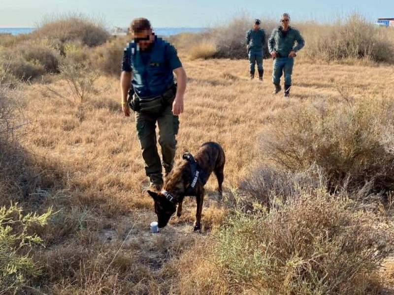 <span style='color:#780948'>ARCHIVED</span> - Police inspect El Campello dog beach following reports of pet poisoning