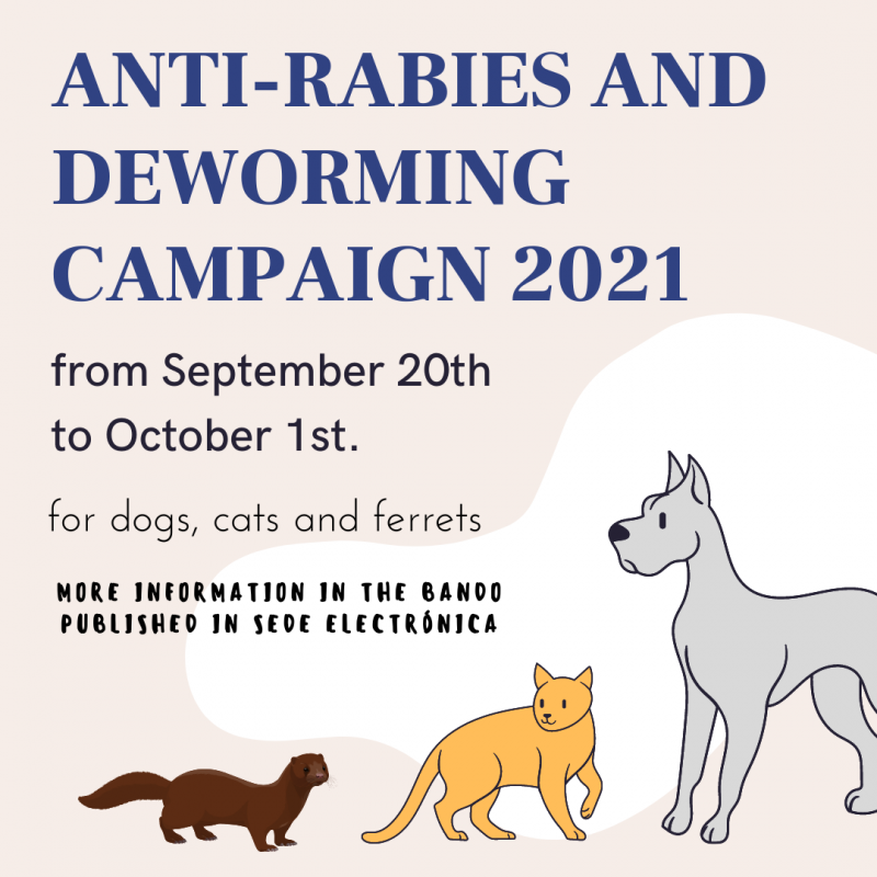 <span style='color:#780948'>ARCHIVED</span> - San Fulgencio deworming and rabies vaccination campaign: September 20 to October 1