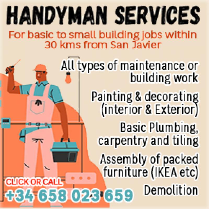 Handyman Malcolm da Rocha