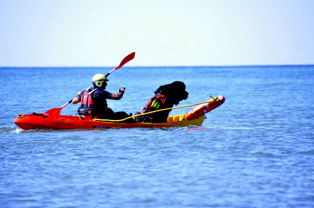 <span style='color:#780948'>ARCHIVED</span> - Wonder dog added to beach rescue team in San Pedro del Pinatar