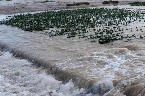 <span style='color:#780948'>ARCHIVED</span> - Flood prevention infrastructures increased as gota fria season begins in Murcia