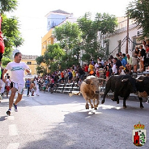 <span style='color:#780948'>ARCHIVED</span> - Calasparra Feria and Fiestas del Arroz, 2nd to 8th September