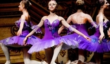 19th December, classical ballet at the Auditorio Víctor Villegas in Murcia