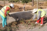 Temporary employment for workers clearing vegetation from Totana roadsides
