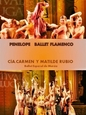 6th March, Flamenco ballet Carmen y Matilde Rubio dance company in Murcia