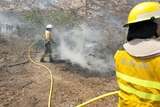 Cehegín landowner sentenced to six months for causing wildfire