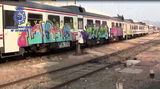 Graffiti artists arrested in Murcia for defacing trains and railway stations