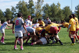 28th and 29th November, rugby matches in the Region of Murcia