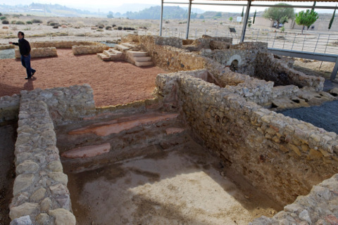20th and 21st February free guided tour of the Villaricos Roman Villa in Mula