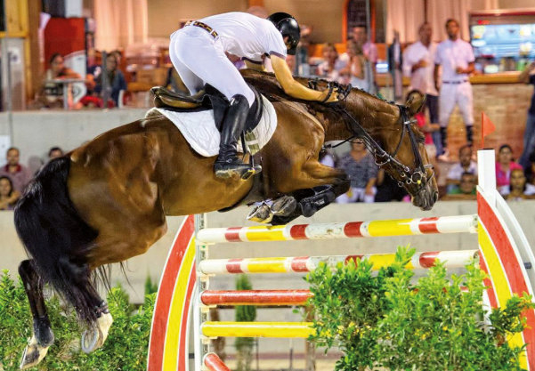 <span style='color:#780948'>ARCHIVED</span> - Winter Cup equestrian event attracts sporting visitors to Murcia