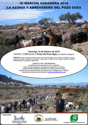 14th February 4km walk with a herd of goats in La Azoh�a