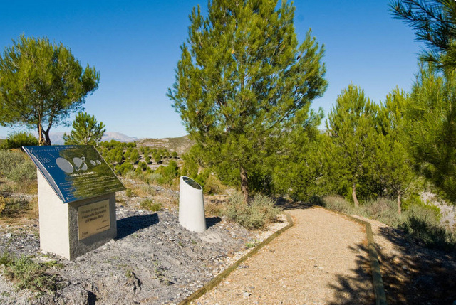 25th June free guided natural family walk in Puerto Lumbreras