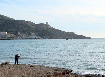 <span style='color:#780948'>ARCHIVED</span> - Cabo Tiñoso becomes the second marine reserve in the Costa Calida