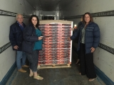 Murcian peach shipment fruit of trade agreement with China