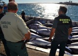 Eight months in jail for stealing from a Cartagena tuna farm