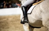 Murcia welcomes top riders at equestrian event in Altorreal