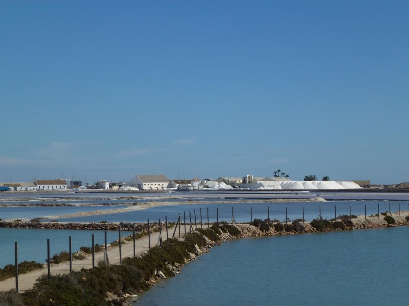26th March, guided tour of the Regional Park of San Pedro del Pinatar