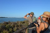 26th February Free guided route in the Salinas natural park San Pedro del Pinatar