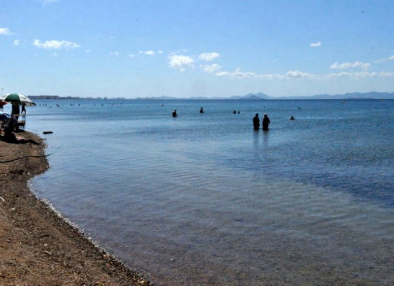 Mar Menor water quality could start to recover in 8 to 12 months