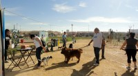 San Javier opens first official dog park