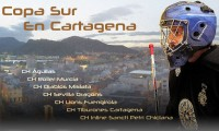 29th and 30th April Roller hockey championships in Cartagena