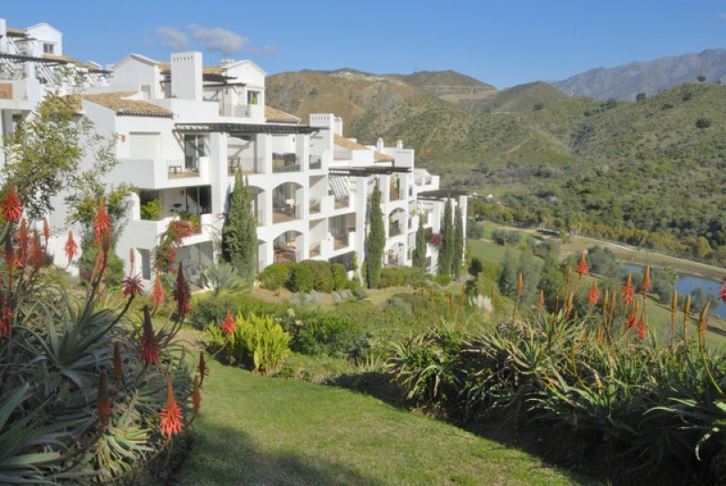 Notaries report 19.5 per cent increase in Spanish property sales in March