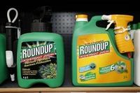 EU fails to agree over withdrawal of Roundup weedkillers