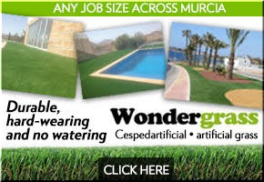 Wondergrass Banner