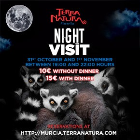 Terra Natura Zoo October Night Visit 2020