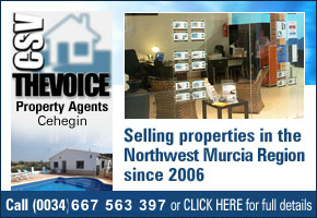 CSV the Voice Property Services