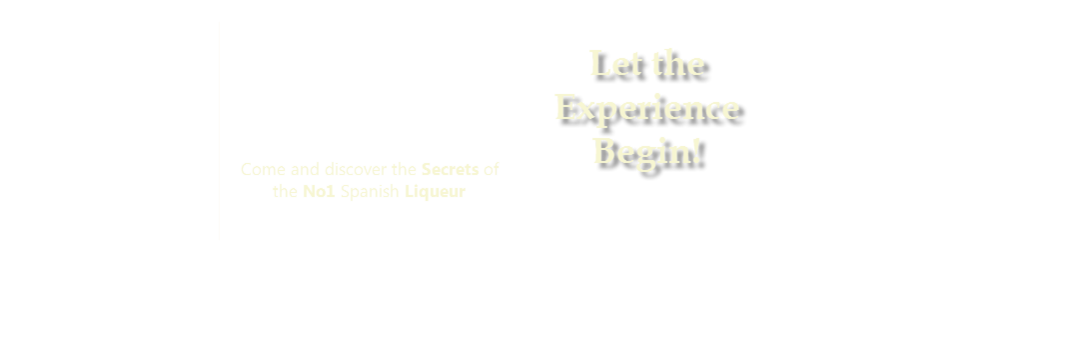 Experience 43